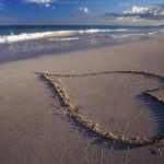 Menabur Cinta, Menuai Bahagia
